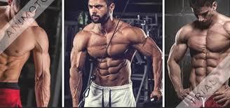 Trevulan -Muscle Formula - composition - dangereux - la revue